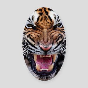 Big Cat Tiger Roar Oval Car Magnet