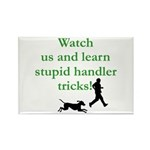 Stupid Handler Tricks Rectangle Magnet (100 pack)