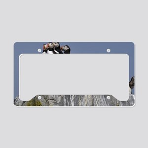 5 puffins License Plate Holder