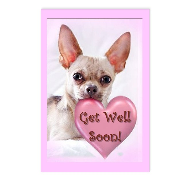 Brand-new Get Well Soon Chihuahua Dog Postcards (Package Of by ritmoboxers PC82