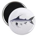 Gafftopsail sea catfish Magnets