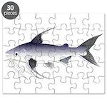 Gafftopsail sea catfish Puzzle