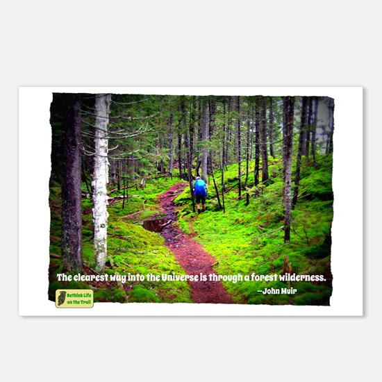 Forest Wilderness Postcards (Package of 8)