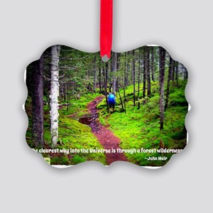 Forest Wilderness Picture Ornament