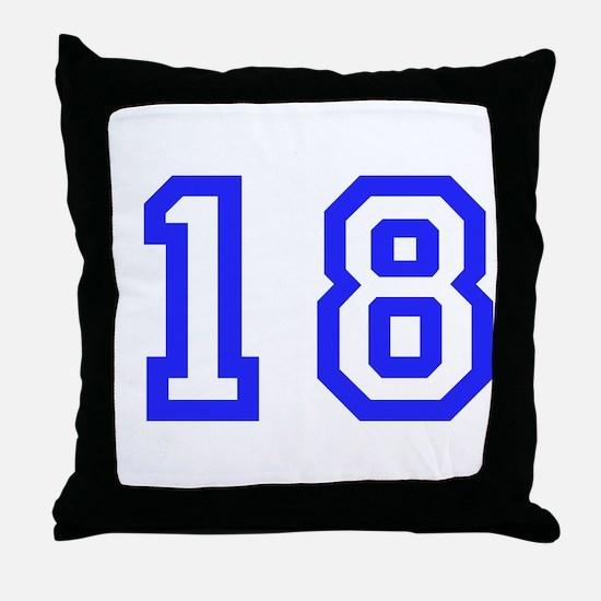 #18 Throw Pillow