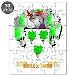 Ervin Puzzle