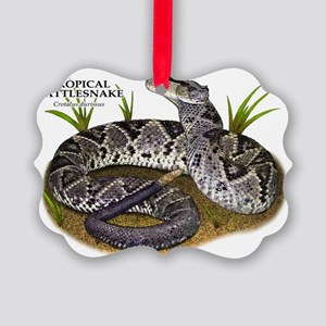 Tropical Rattlesnake Picture Ornament