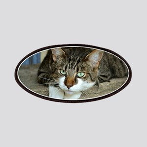 Cat White Paws Green Eyes Patch