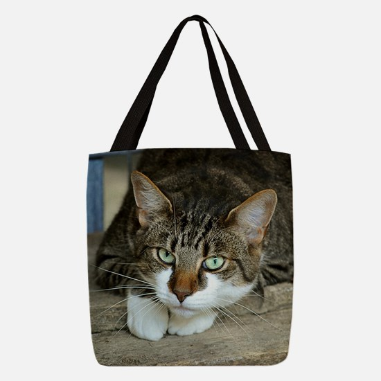 Cat White Paws Green Eyes Polyester Tote Bag