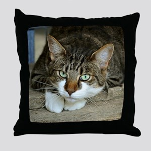Cat White Paws Green Eyes Throw Pillow