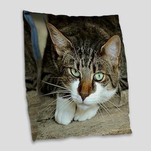 Cat White Paws Green Eyes Burlap Throw Pillow