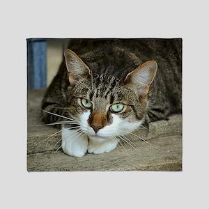 Cat White Paws Green Eyes Throw Blanket