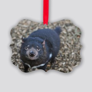 Tasmanian Devil Picture Ornament