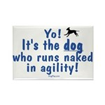 Dogs run naked Rectangle Magnet (100 pack)