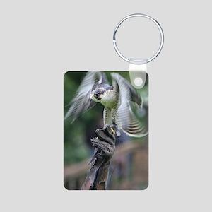 Falconry Keychains