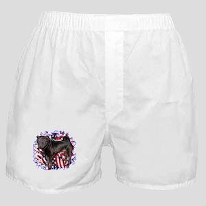 Shar Pei Patriotic Boxer Shorts