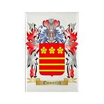 Emmerich Rectangle Magnet (100 pack)