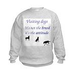 Visiting Dogs Kids Sweatshirt