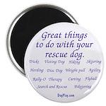 Great Dog Activities 2.25
