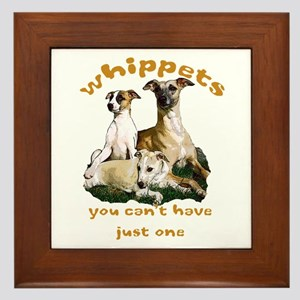 Just one whippet Framed Tile