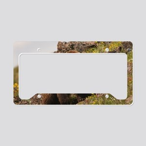 bear License Plate Holder