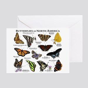 Butterflies of North America Greeting Card