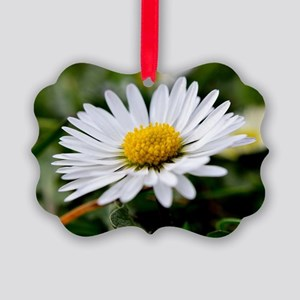 White Flower Picture Ornament