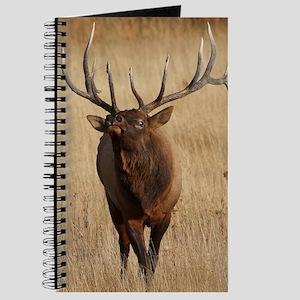 bull elk Journal