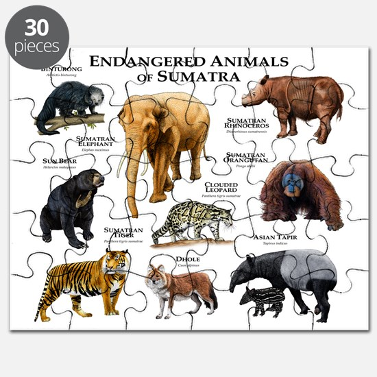 speech endangered animals Endangered species the reason i have choose endangered species for my essay is, over the years, many people have forgotten about the animals of this planet.