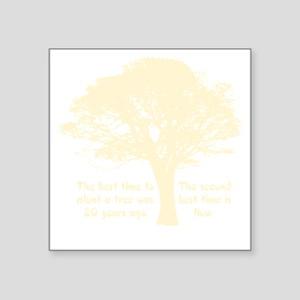 "Plant a Tree Now Square Sticker 3"" x 3"""
