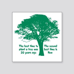 "Plant a Tree Now Square Sticker 3"" x 3"""