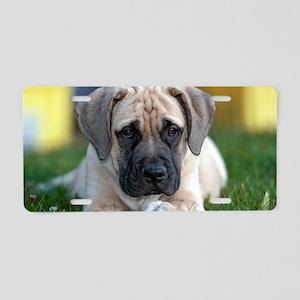 English Mastiff puppy Aluminum License Plate