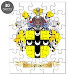 Ellis Puzzle