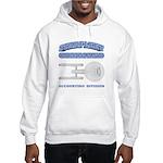 Starfleet Accounting Division Hooded Sweatshirt