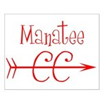 Manatee CC Small Poster