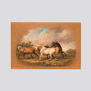 Stallion Horse Trio Rectangle Magnet