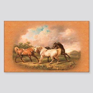Stallion Horse Trio Sticker (Rectangle)
