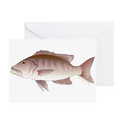 Cubera Snapper Greeting Cards