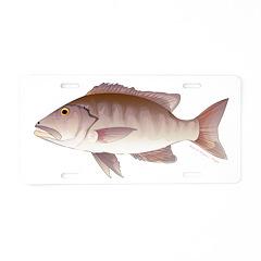 Cubera Snapper Aluminum License Plate