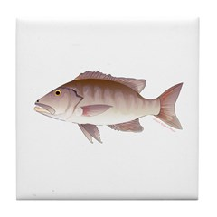 Cubera Snapper Tile Coaster