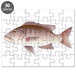 Cubera Snapper Puzzle