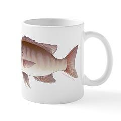 Cubera Snapper c Mugs