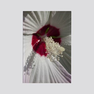 Hibiscus Flower Rectangle Magnet