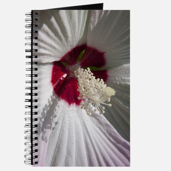 Hibiscus Flower Journal