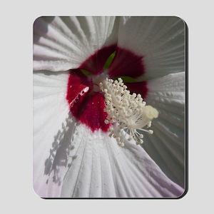 Hibiscus Flower Mousepad
