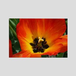 Orange Flower Rectangle Magnet