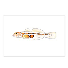 Orangesided Goby Postcards (Package of 8)