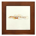 Orangesided Goby Framed Tile
