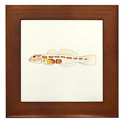 Orangesided Goby Framed Tile