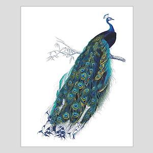 Vintage peacock Poster Design